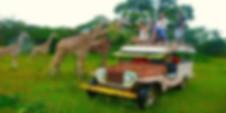 Calauit Safari Tour Packages