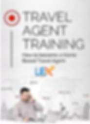 work from home as a travl agent