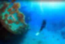 Scuba Diving Tours