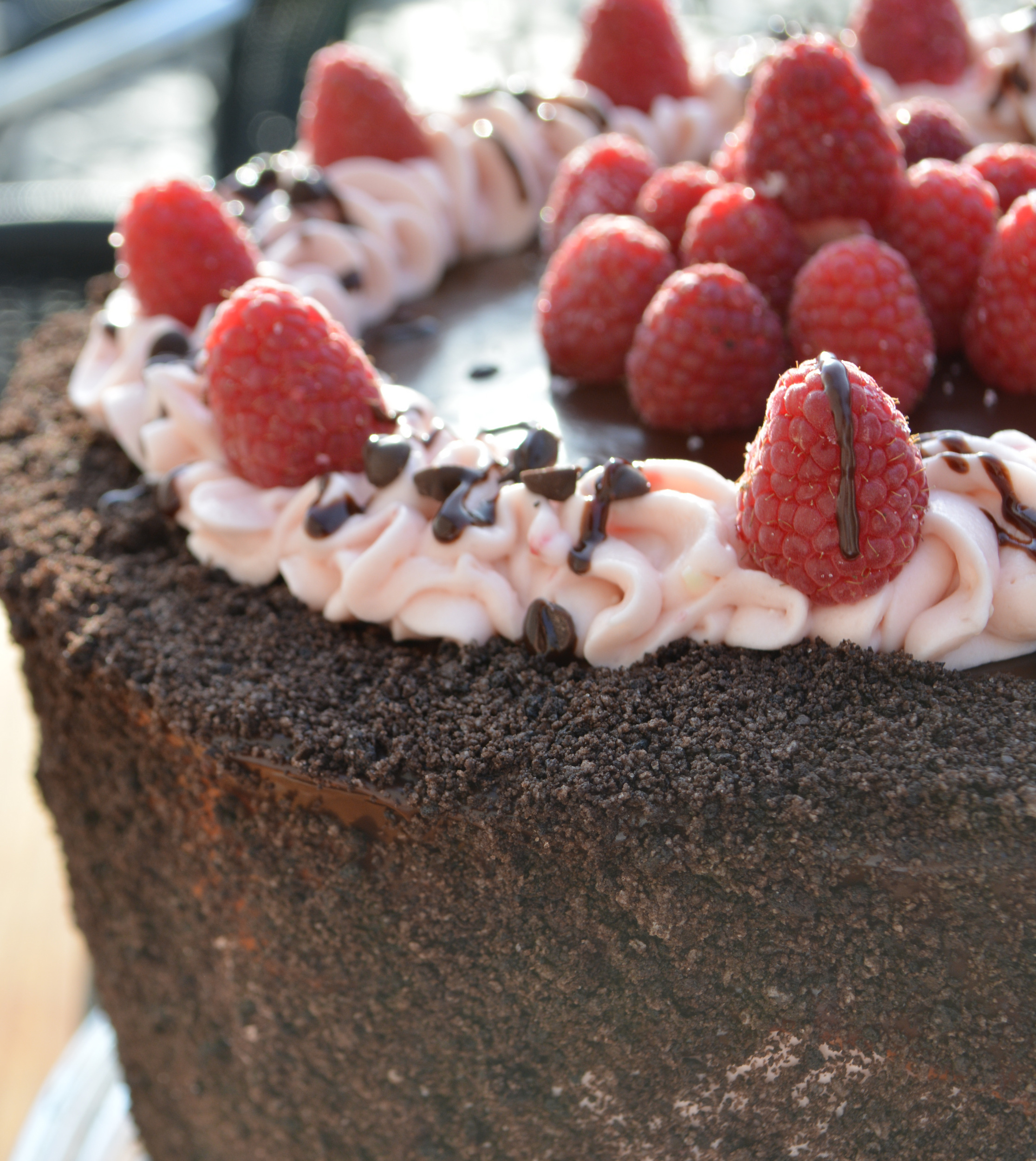 Raspberry Chocolate Cake