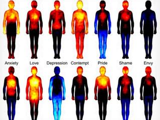 感情で身体感覚はこれほどまで変化する!〜感情と身体の相関関係〜
