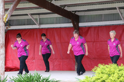 The Line Dancers