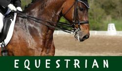 Equestrian Schedule