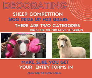 Sheep Competition.png