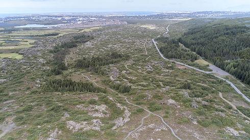 Búrfellshraun 2019-06-15-346-minni útgáf