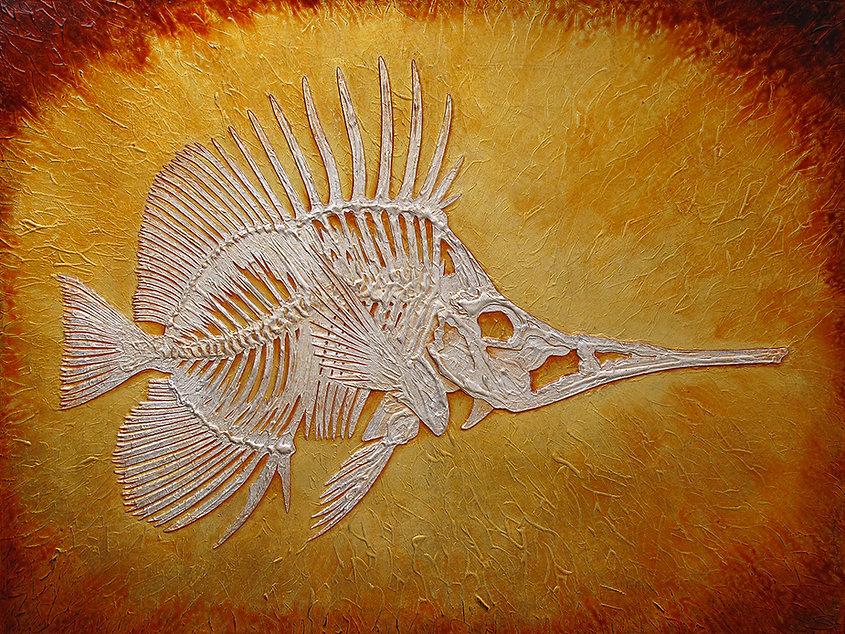 fish study.jpg