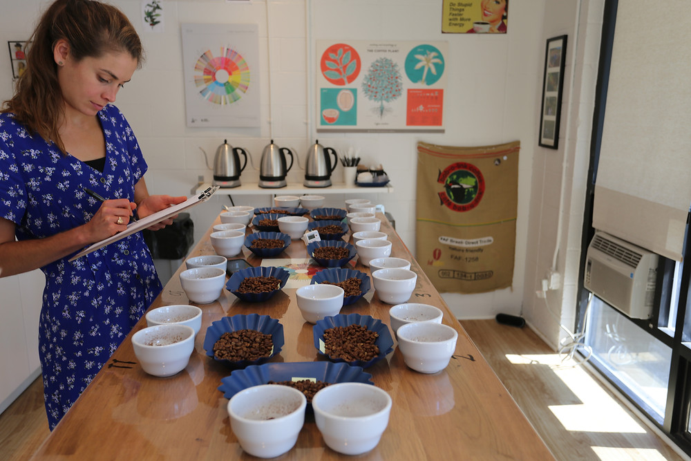 Bona Cupping Group