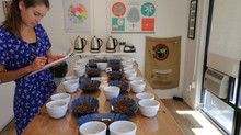 Bona Cupping and Tour