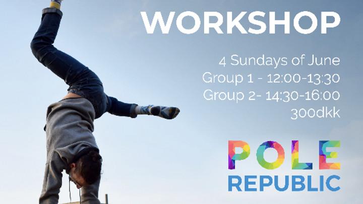 Pole Republic - 6h Workshop