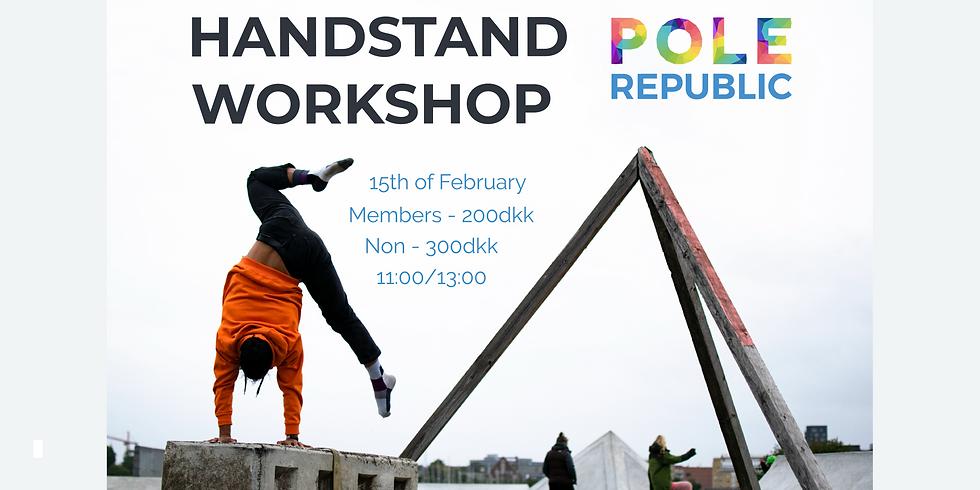 Workshop at Pole Republic