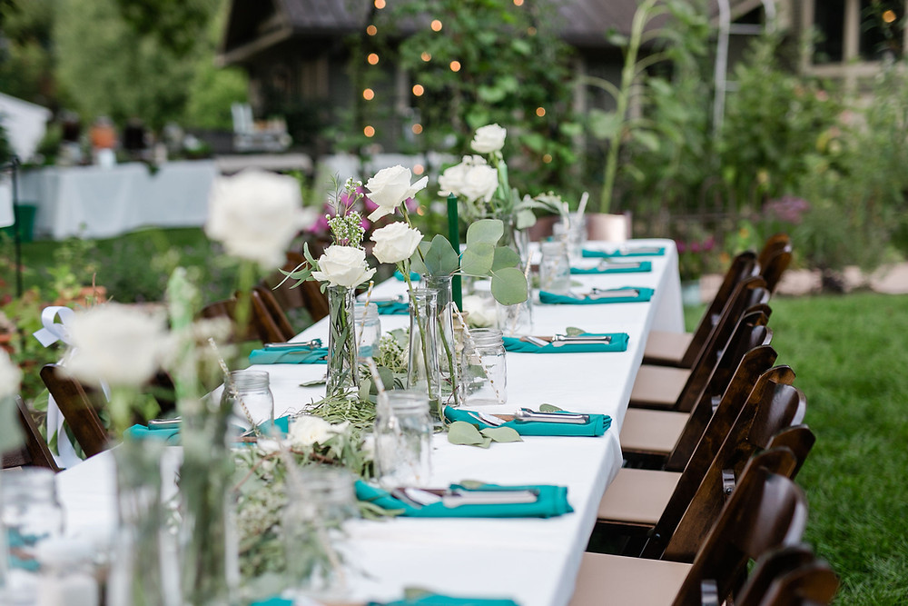 Illinois backyard summer small mini wedding