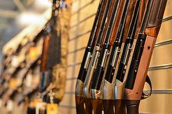 guns in row.jpg