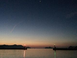 近海マグロ延縄船「良栄丸」は、第90回目(2020年第9回目)の操業を終えて、8月11日に水揚げを行います‼