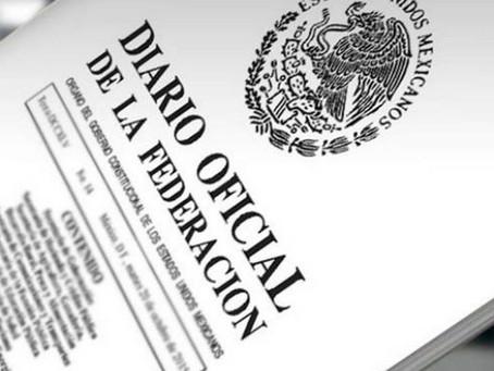 Medidas para garantizar los derechos de protección de datos personales y acceso a la información.