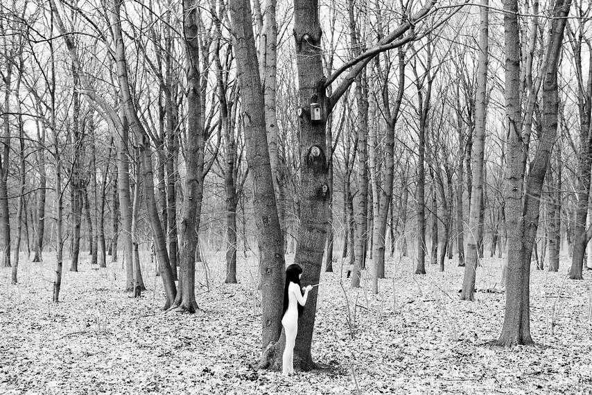 Performance Cabelo, corpo e ego | série A mãe natureza e a filha da internet