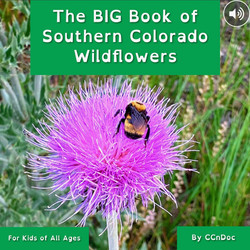 The BIG Book of SOCO Wildflowers Interactive Ebook & Video Book on sale now!