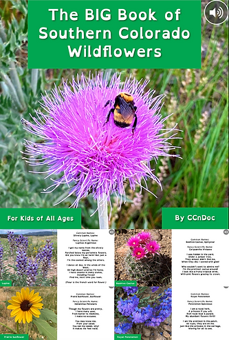 Copy of The BIG Book of Southern Colorado Wildflowers_Vimeo Poster.png