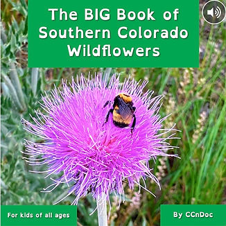 The BIG Book of Southern Colorado Wildflowers by CCnDoc.jpg