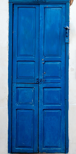 Blue Door 1.png