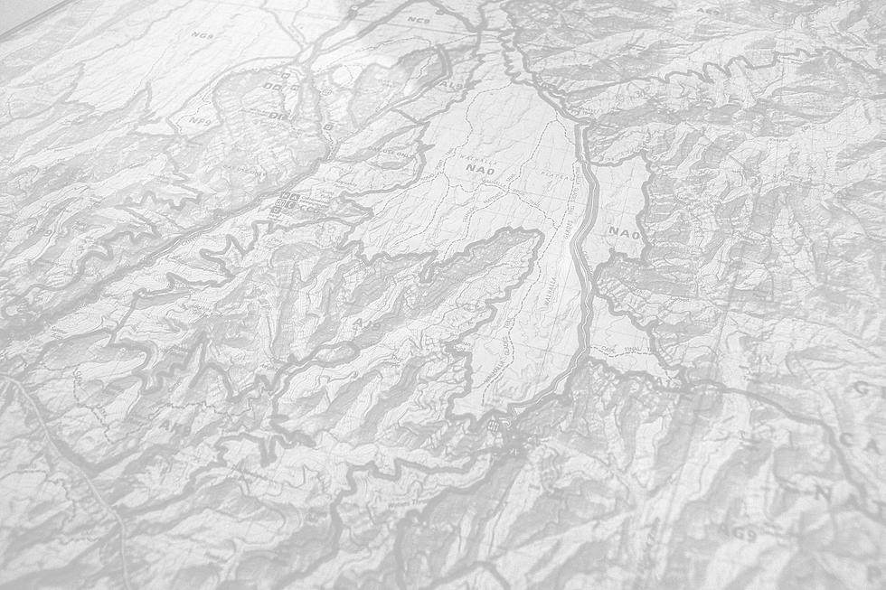 Money National Park Background.png
