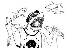 da shark blanc sans requin.jpg