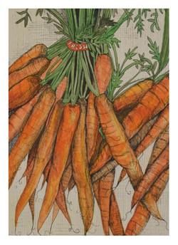 carrot_P