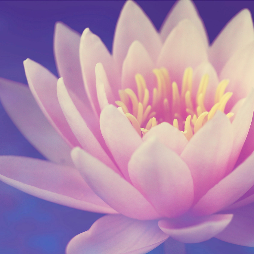 Empowering the Soul Self - Evening