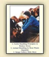 Cattle Handlng Principles to Reduce Stress DVD & CD Grandin Handling Systems, Cattle, Ranch Corrals, Stock Yards, Lairage, Chute, Race, Humane Livestock, Abattoir, Stock Pens