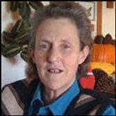 Temple Grandin Grandin Handling Systems, Cattle, Ranch Corrals, Stock Yards, Lairage, Chute, Race, Humane Livestock, Abattoir, Stock Pens