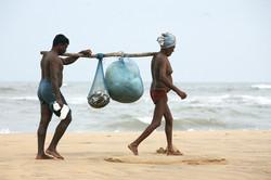Men walking on beach with stick