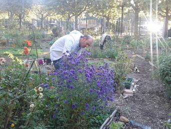 Un jardin partagé au Bel Air