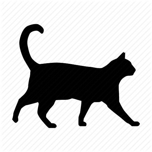 1-2 Cats : 20 min visit