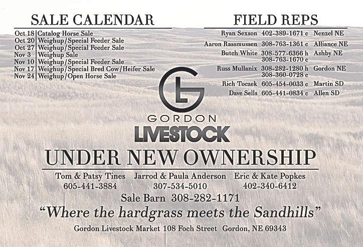 Gordon 4.25x5.5 Postcard Front[25396].jp