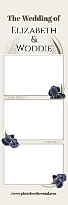 overlay copy 4.png