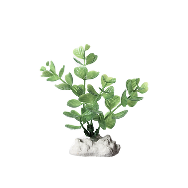 Artificial%20Plant_edited.png