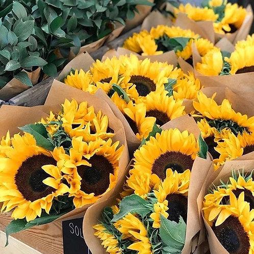 Sunflowers (20stuks)