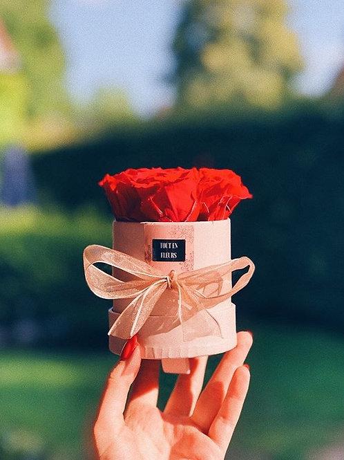 Flowerbox mini