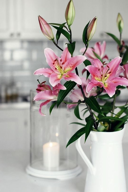 Blush pink Lily's (20 lelies)