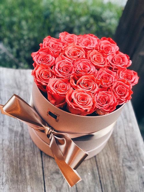 Flowerbox high