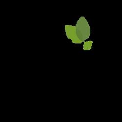 reforesta_logo_final_Mesa de trabajo 1.p