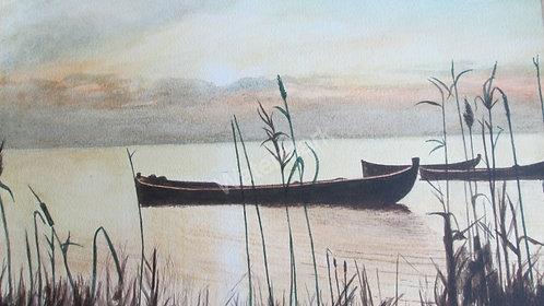 La Albufera - Original Watercolour by William Mans