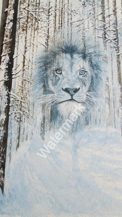 Lion in Winter - Original Watercolour by William Mans