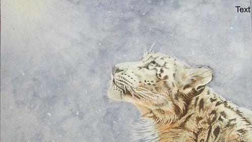 Snow Leopard - Original Watercolour by William Mans