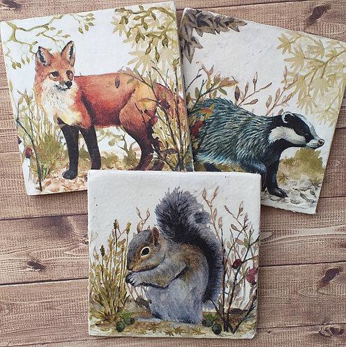 Woodland Creatures - Individual Ceramic Coasters