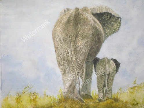 Elephant and Baby - Original Watercolour by William Mans