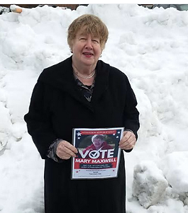 Vote in snow.png