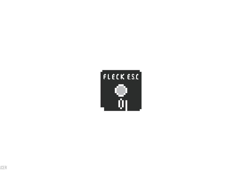 FLECK E.S.C