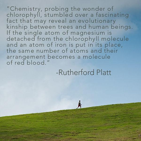 Rutherford Platt.JPG