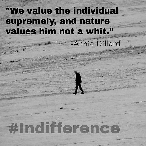 We value the individual supremely - Anni