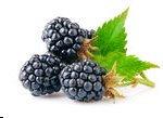 Blackberry - Ginger Dark Balsamic Vinegar